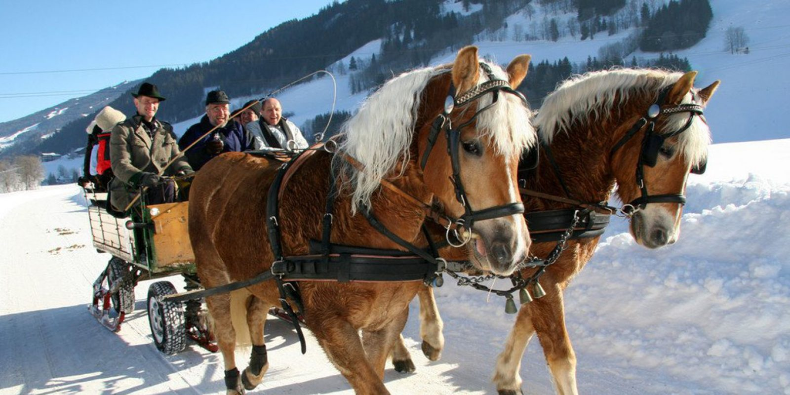 Kutschenfahrt Winter